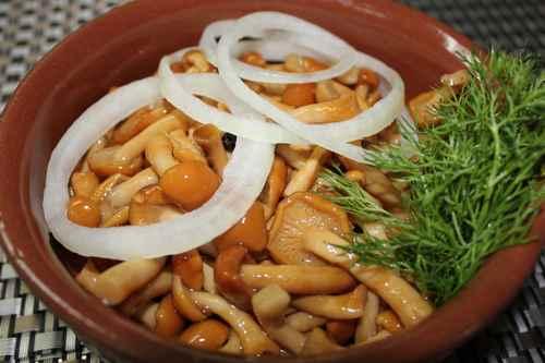 Рецептура блюда Грибы маринованные или соленые с луком