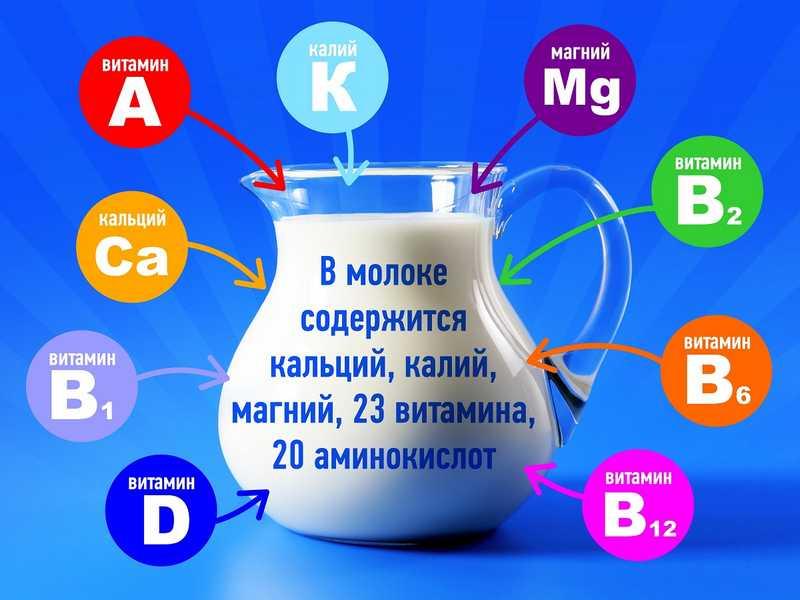 Состав молока и молочных продуктов